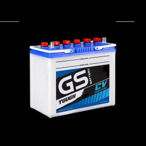 GS NS60L