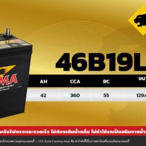 PUMA 46B19L